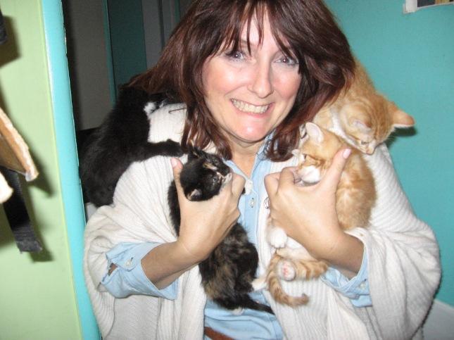 crazy cat lady kit